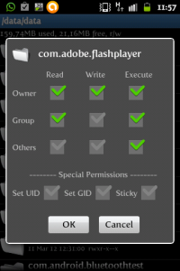 /data/data/com.adobe.flashplayer